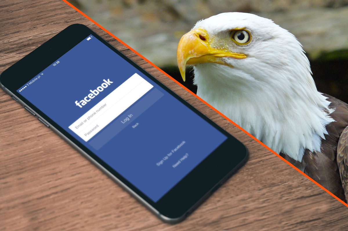The Big Picture View of Facebook for Business